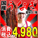 Eel Kabayaki charcoal-grilled eel 1 tail Super oversized ( 1 tails: approx. 260 g ~ 285 g ) in Miyazaki Prefecture and Kagoshima Prefecture production included 5 tail! * The eel there with eel midsummer ox