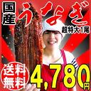 Midyear unagi Kabayaki domestic production gift 2014 presents midsummer ox eel 1 tail (approx. 260 g ~ 285 g) super sized Miyazaki Prefecture, and from Kagoshima Prefecture