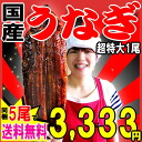 More than one eel kabayaki charcoal fire firing eel kabayaki outsize (one of them:) By about 260 g - around 285 g) Miyazaki product, five bundling from Kagoshima! ※The eel dog days day of the Ox with the sauce of the eel kabayaki