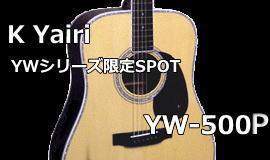 K�Ԏ���:YW-500P