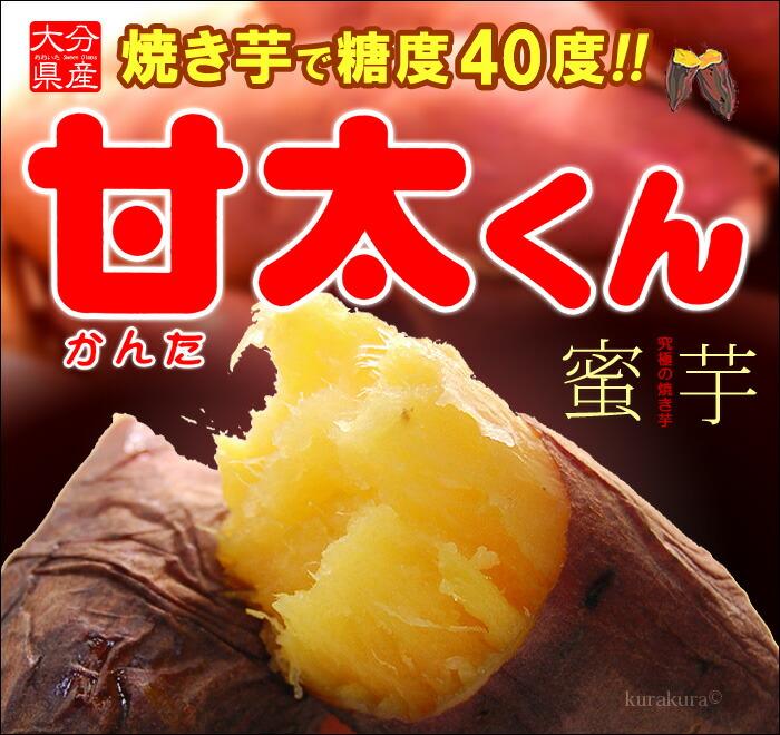 甘太くん(紅はるか)販売/通販
