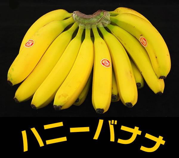 送料無料!!【バナナ】 ハニーバナナ 1房(約2.2kg) エクアドル産