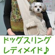 OrangeCafeが監修レディメイド!