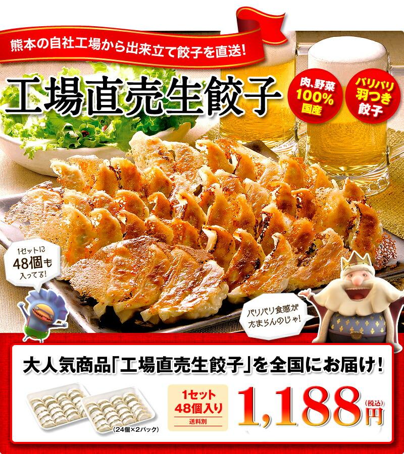 工場直売生餃子48個 肉野菜100%国産 パリパリ羽つき餃子
