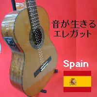 エレガット/エレクトリック・クラシックギター