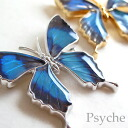 In the world with real butterfly wings one accessory * Butterfly brooch & pendant = Green =