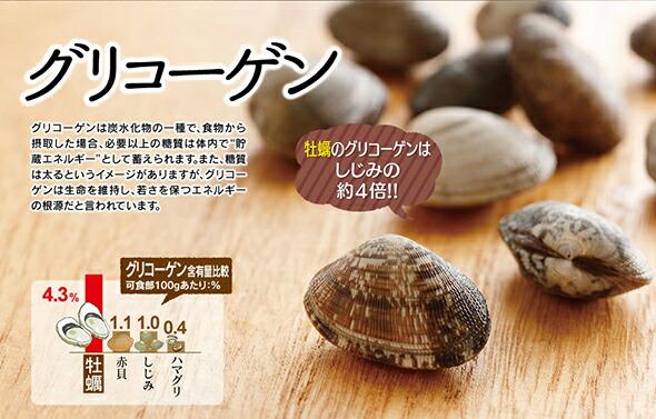 牡蠣のグリコーゲン