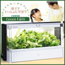 In the cultivation of vegetables in the parent and child can learn the natural summer homework (5-12 business days will ship the missing end suddenly available) ■ products direct from manufacturers. Returns, cancellations, cod and included non-★ points