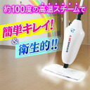 ★ big Thanksgiving sale ( limited so order after the abrupt termination and ) ★ more than 5250 Yen bills pulled free steam MOP TV shopping cleaning equipment machine ★ points 10P04Feb1310P28oct13.