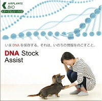 http://image.rakuten.co.jp/pet-seisyo/cabinet/imgrc0076957226.jpg