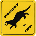 FERRET in Car sticker