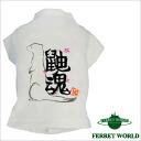 Jac T shirt Jac soul for ferrets and ferret T shirt / ferret were / wear / printed t-shirt / fashion