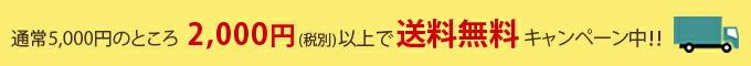 只今2000円で送料無料キャンペーン中!