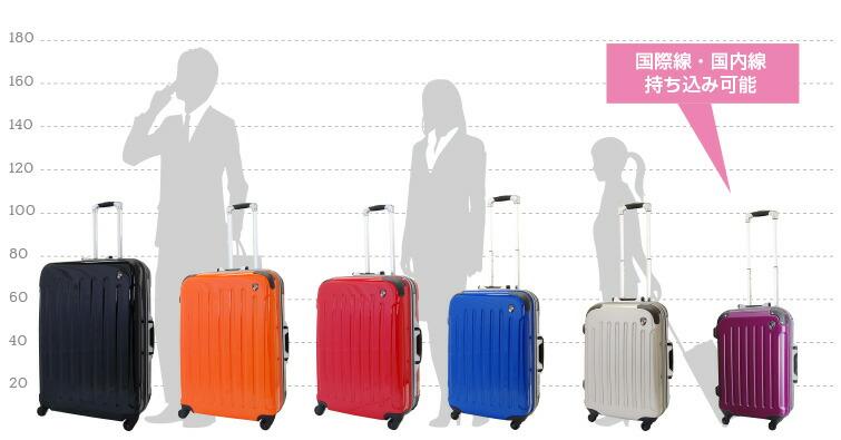 スーツケースサイズ