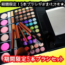 Bargain 3999 Yen set makeup palette set limited propelled S78 & election look and color of glitter 5 shadow brush Deluxe Kit is