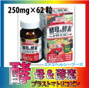 Yeast and enzyme プラストマトリコピン ミナミヘルシーフーズ