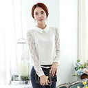Sea through lace sleeve, chiffon blouse, long sleeves and shirt ◎ order today will ship 5/8
