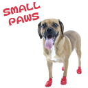 ◎ pauzdog boots 12 enter/small size ( red) 1