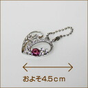 / Accepted / in accessory gorgeous heart Ruby / Rainbow / 5,000 yen or more