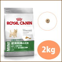 Royal Canin mini light 2 kg and more than 5000 yen /.
