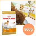 Royal Canin poodle dog 800 g / 5000 yen or more in