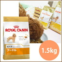 Royal Canin poodle adult dogs for 1.5 kg and more than 5000 Yen / at