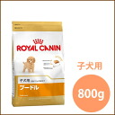 Royal Canin poodle puppies for 800 g / 5000 yen or more in