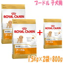 Royal Canin poodle puppy for 1.5 kg × 2 bags plus 800 g present / / /