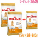 Royal Canin poodle in elderly dogs for 1.5 kg × 2 bags plus 800 g //10P22Nov13/