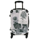 Trunk carry case Type-C dog / poodle / carry case / carry cart / trunk case / traveling bag / goods