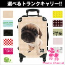 Pug THE DOG customized carry bag