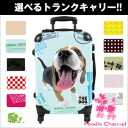 THE DOG customized carry bag Beagle