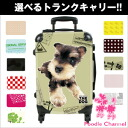 THE DOG customization carrier bag miniature schnauzer