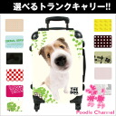 THE DOG customized carry bag Shetland Sheepdog dog / poodle / carry case / carts / trunk case / travel bags / toy