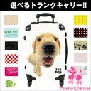 THE DOG customization carrier bag Labrador retriever