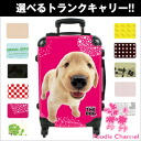 THE DOG customized carry bag Golden Retriever dog / poodle / carry case / carts / trunk case / travel bags / toy