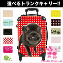 THE DOG customized carry bag PIG