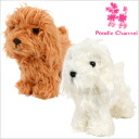 Teddy bear cut toy poodle poodle / gadgets / Interior / toys / toy / lame clip / Kennel clip / show clip / gift / gifts / dog / dog