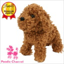 Premium paper toy poodles red poodle gadgets Interior toys / toy / dogs / dog