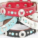 K. Collection concho color (S, SS size) N-046 dog / dog / pet / collar / harness / goods