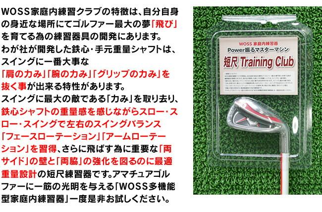 【送料無料】【スイング練習】トレーニング用品・男女兼用アイアンタイプ