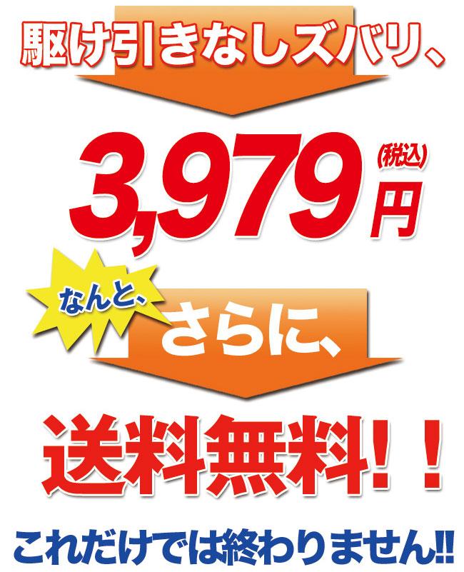 【送料無料・62%OFF】WOSS/ウォズ Power振るMasterアイアン編男性用スイング練習用品 家庭内練習器!