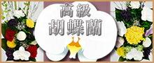 胡蝶蘭の仏花