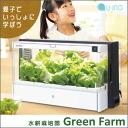 Without soil, grow vegetables. Now the hydroponic cultivation of the attention at home easily. 10P30Nov14, fs04gm,