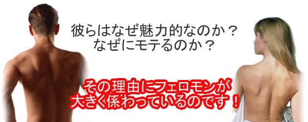 �t�F���`�J�z�[�N/�ނ�͂Ȃ����͓I�Ȃ̂��H�@���̗��R�Ƀt�F���������傫���W����Ă���̂ł��I