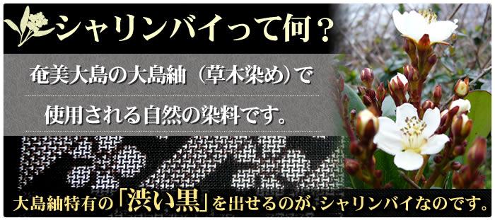 シャリンバイは、奄美大島の大島紬で使用される自然の染料です