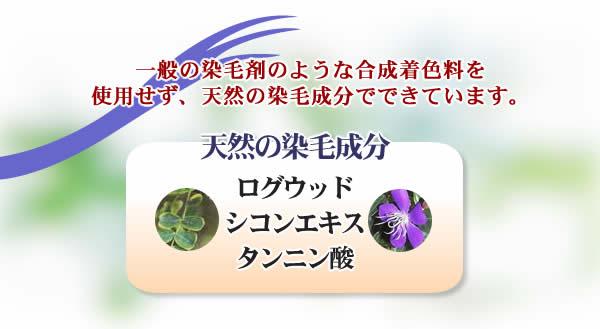 黒耀ポイントケア/天然の染毛成分で自然