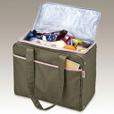 Thermos keep cold shopping bag(RDL-022/R)