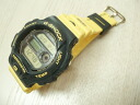 G-shock DW-6100DW-9 (4 dolphincusila Conference models)