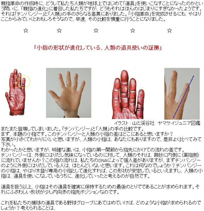 道具を扱う以上、小指はその道具を確実に保持するための最後のとりでであることが求められます。それにふさわしい形状が少し内向きの指先ポジションなのです。   これを私たちの捕球の道具である野球グローブにあてはめていけば、どのような小指が求められるのでしょうか?考えられることは、   1) 確実に捕球するため、小指の俊敏な動きと反応=「キレ」   2) 4本指の動きのうち、小指が先陣をきれるような、巻き込むような、包み込むような指の動き   ではないでしょうか?これ無しには、進化し続けている私たちの手と指の期待に   こたえていないと考えられるのです。